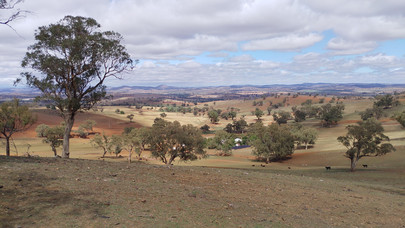 [Translate to Englisch:] Dry Landscape Australia